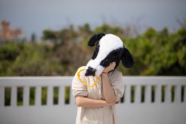 歌声に悩む牛