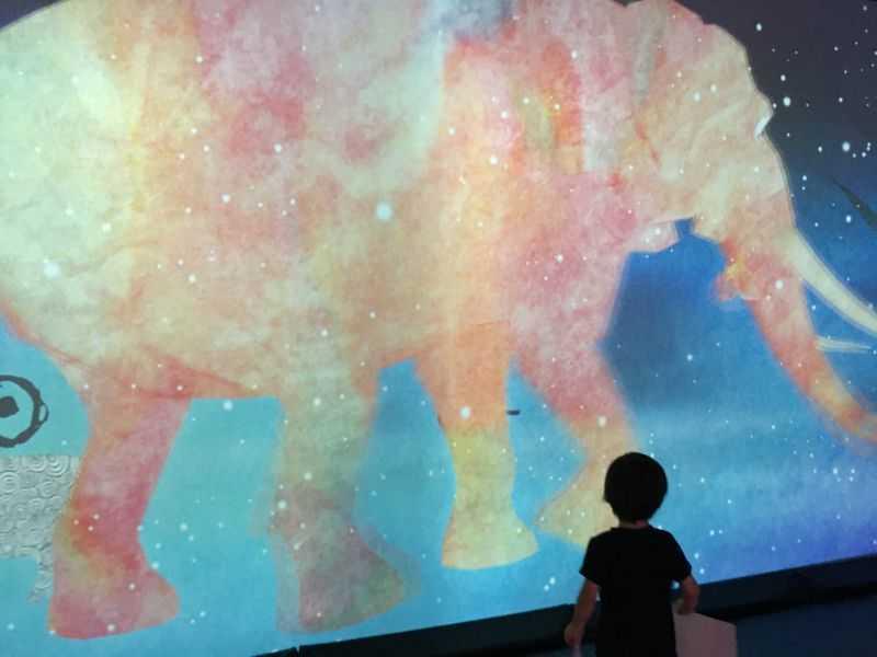 ららぽーと富士見 チームラボ 未来の遊園地 壁
