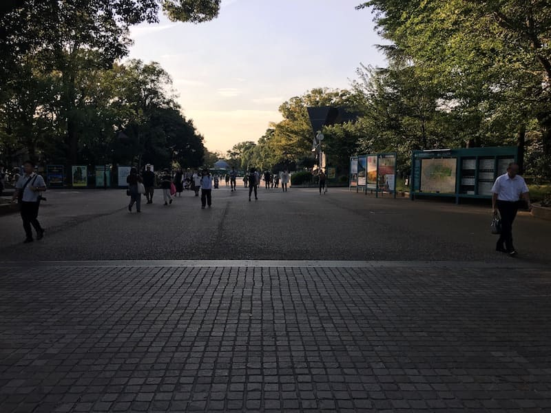 上野公園内の十字路
