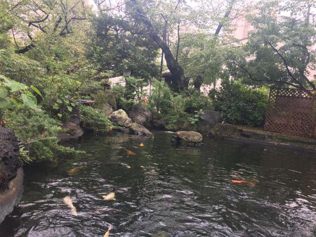 愛宕神社の碁盤の池